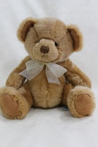 Soft Unisex Teddies